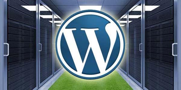 Những ưu nhược điểm của WordPress hosting